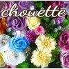 Chouette(シュエット) プリザーブドフラワー・ポーセラーツサロン☆成田・公津の杜