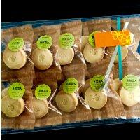 砂糖不使用!乳酸菌入り グルテンフリー米粉クッキー(10袋セット)【葉山あさこ商品企画開発室】