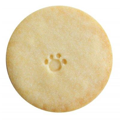 ※数量限定、翌日発送!【プレーン/乳酸菌グルテンフリー米粉クッキー】20枚詰め合わせ