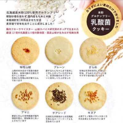 ※数量限定、翌日発送【アソート6種/乳酸菌グルテンフリー米粉クッキー】20枚詰め合わせ
