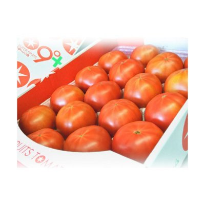 スーパーフルーツトマト 茨城産 約900g【送料込】3240円【お届け日指定不可】