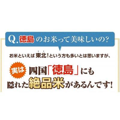 5000g新米 徳島県産こしひかり 5kg【平成29年産】    2680 円