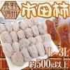 長野県産市田柿【干し柿】 100g  100 g  590 円