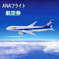 ANAフライトパック☆鳥取-羽田往復