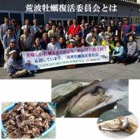 2017年第6期12月出荷【荒波牡蠣A5ランク】生食用荒波牡蠣剥き身(500g×2パック=1kgが1口)