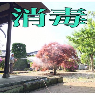 10000円 決済用webチケットのイメージその2