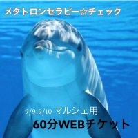 メタトロンセラピー☆チェック&セラピー☆60分