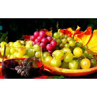 【事前お払い専用】10月25日(水)あなた好みを探る!香る品種特集 ワイン会