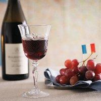 【お得な前売り券!!】2月21日(水)ワイン会《フランス一周ワイン巡りの会》