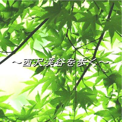 【6月2日(金)開催】西沢渓谷ハイキング~セラピーロードで森林浴~