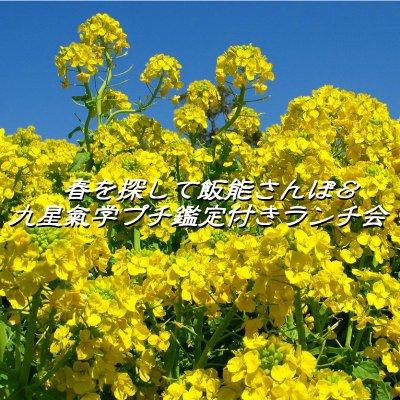 【3月11日(土)開催】春を探して飯能さんぽ&九星氣学プチ鑑定付きランチ会~