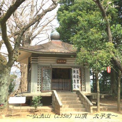 弘法山ハイク~緑輝く山道を歩く~のイメージその4