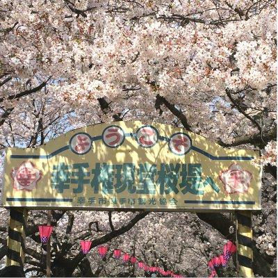 【4月6日(木)開催】幸手権現堂さくら堤お花見ウォーク ~桜並木散策とお花見ランチ~のイメージその3