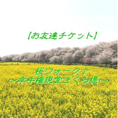 【4月6日(木)開催】幸手権現堂さくら堤お花見ウォーク ~桜並木散策とお花見ランチ~のイメージその6