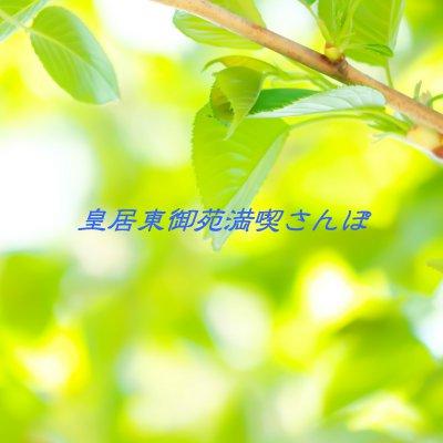 【開催日未定】秋空の東京さんぽ ~九段下から皇居東御苑を歩く~