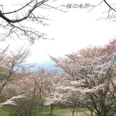 弘法山ハイク~緑輝く山道を歩く~のイメージその5