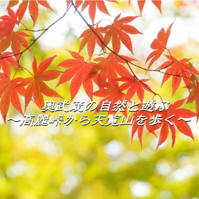 【12月12日(月)開催】奥武蔵の自然と遊ぶ~高麗峠から天覧山を歩く~