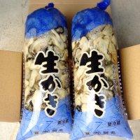 《送料込み》むき身牡蠣1キロ袋2ヶ入り