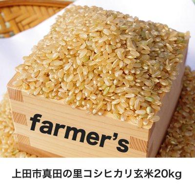 《29年度産》コシヒカリ玄米20kg☆無農薬有機栽培長野県上田市真田の里よりお届け