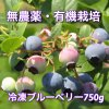 40パーセントオフ!無農薬、有機栽培!冷凍ブルーベリー《750g》