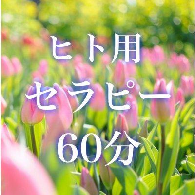 メタトロンセラピー60分(ヒト用)