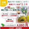 【定期コース】【エキス強化ティーパックタイプ】神秘麗の龍神桑茶90包【送料無料】