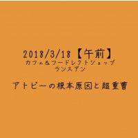 【2018/3/18午前】アトピーの根本原因と超重曹