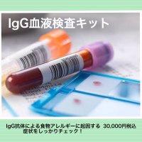 IgG検査/ IgGフードアレルギー検査キット