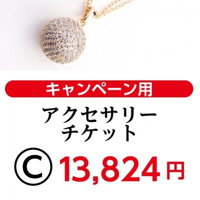 ツクツクマルシェ9/9・9/10 Cアクセサリーチケット