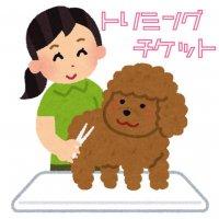 ワンちゃん シャンプー&カット (小型犬 ~3.9㎏)