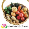 月2回お届け!利根川水系産 超減農薬 旬の野菜2000円セット