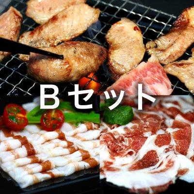イベリコ豚 バーベキューセット(3〜4人、最高級ベジョタ)