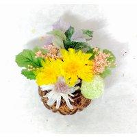 ことね菊の小さなお供え花