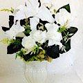 カサブランカのお供え花