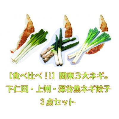 食べ比べ!!関東3大ネギ。下仁田ネギ餃子[15個入]・上州ネギ餃子[20個入]・焦し深谷ネギ餃子[20個入] 3点セット