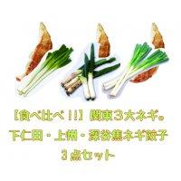 【食べ比べ!!】関東3大ネギ。下仁田ネギ餃子[15個入]・上州ネギ餃子[20個入]・焦し深谷ネギ餃子[20個入] 3点セット
