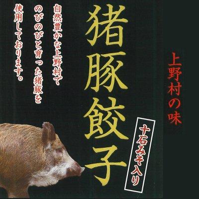 猪豚餃子20個入り十石みそ入り 上野村の味