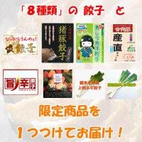 餃子詰め合わせセット送料無料8種類+限定1商品(ほぼ全商品)群馬の千吉良さんおすすめ餃子
