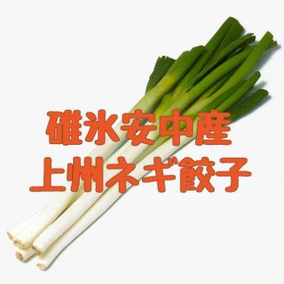 碓氷安中産・上州ねぎ餃子 20個入り