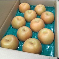【果汁ジューシー♪】 豊水梨 5㎏ 5Lサイズ 10個入り