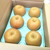 【果汁ジューシー♪】 豊水梨 3㎏ 6~7個入り