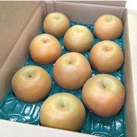 【果汁ジューシー♪】 豊水梨 5㎏ 6Lサイズ 9個入り