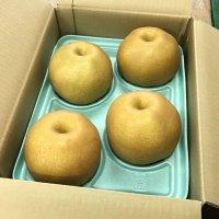 【当園最後の品種】 あたご梨 3㎏ 4~5個入り