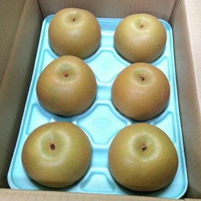 【人気急上昇‼】 あきづき梨 3㎏ 5~8個入り
