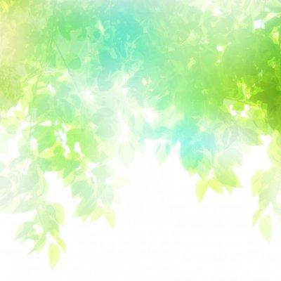 3/6 ホームページ作成講座【基本編】 4時間コース  講師:HOUKI