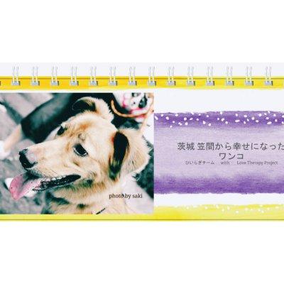 好評につき追加増刷販売 2017 犬チャリティ卓上型カレンダー(茨城 笠間から幸せになったワンコ)