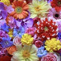 4月14日華道家瀬尾理祥  母の日の感動プレゼント プレlesson