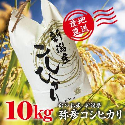 29年度産新米 幻のお米・新潟県産「弥彦コシヒカリ」特A級 10kg