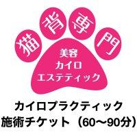 カイロプラクティック施術チケット (60〜90分)