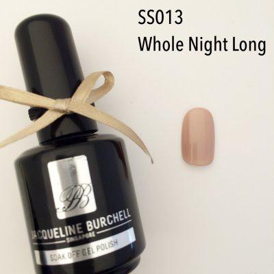 【セルフネイルに簡単!】カラージェル SS013 Whole Night Long